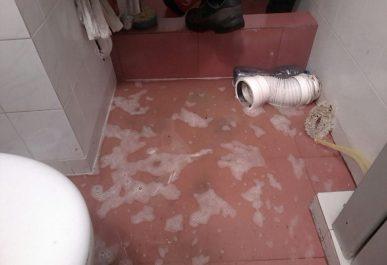 zapushena-toaletna